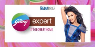 Image-Neha-Dhupia-and-other-celebs-take-up-home-hair-coloring-with-Godrej-Expert-Rich-Crème's-ColourAtHome-MediaBrief.jpg