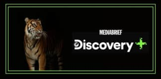 image-6-documentaries-discovery-plus-international-tiger-day-MediaBrief.jpg