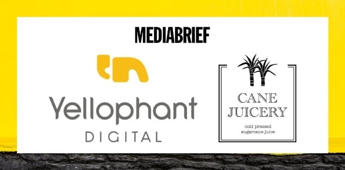 Image-yellophant-digital-bags-digital-media-buying-mandate-for-cane-juicery-MediaBrief.jpg
