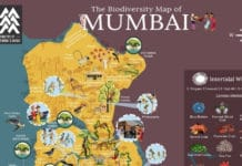 Image-Rohan-Chakravarty-creates-biodiversity-map-of-Mumbai-mediaBrief.jpg