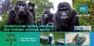 Sony BBC Earth's 'Spy in the Wild 2' premiere