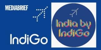 image-IndiGo-India-by-IndiGo-campaign-mediabrief.jpg