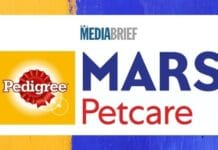Image-TRA-Brand-Trust-report-names-Pedigree-Indias-most-trusted-dog-food-brand-MediaBrief.jpg